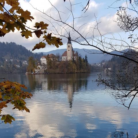 The Bled island in Slowenia - free photos