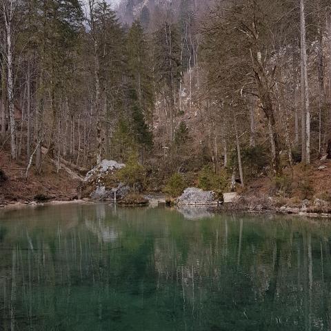 A wonderful lake under the hills