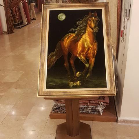Beauty of Turkish Horses