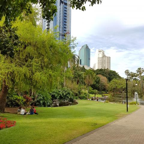 Free photos - Brisbane city park
