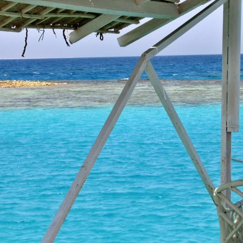 Crystal clear sea in Egypt - free photo