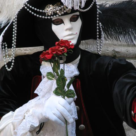 Venetian carnival mask free images