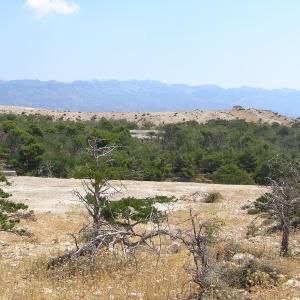 Rab island Croatia - Goli otok ('Naked Island')