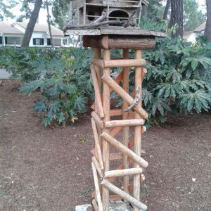 Birdhouse in the Garden - Free photos