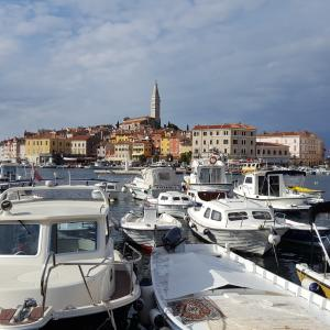 Rovinj, Croatia  - A view of the old city core with the Saint Euphemia bell tower and boats moored at the dock