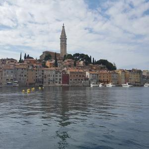 Rovinj City panorama - stock photo